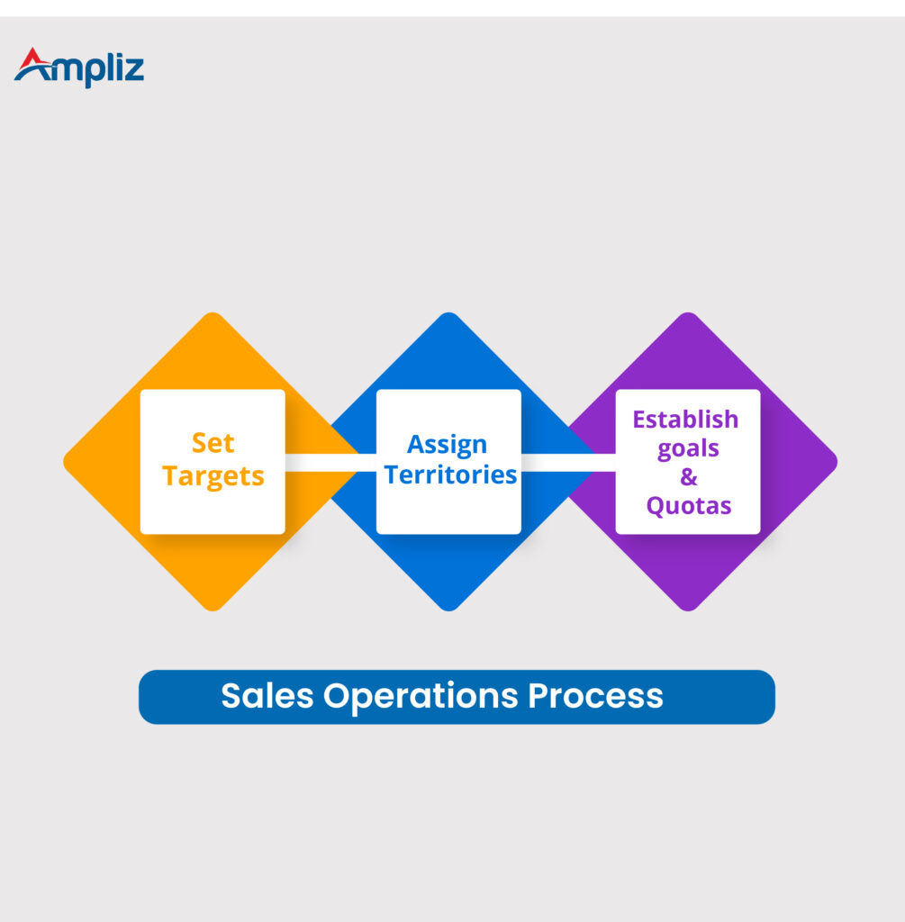 sales operation process in sales management