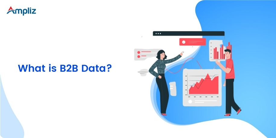 what is b2b data?