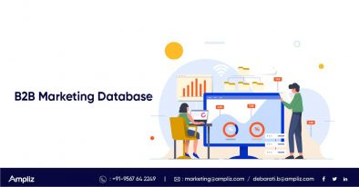 b2b marketing database